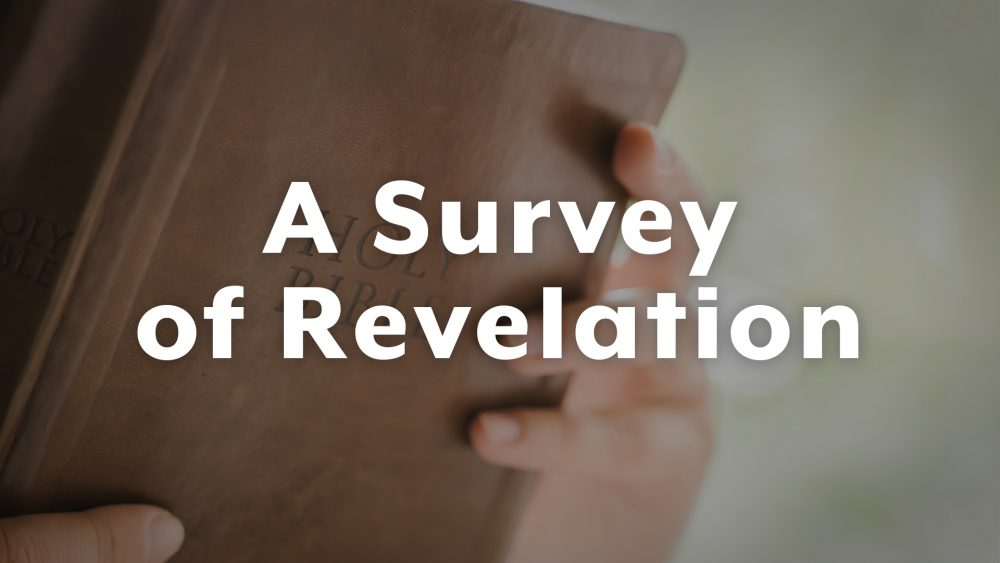 A Survey of Revelation
