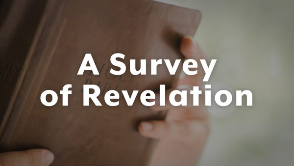The Fall of Babylon || A Survey of Revelation Image